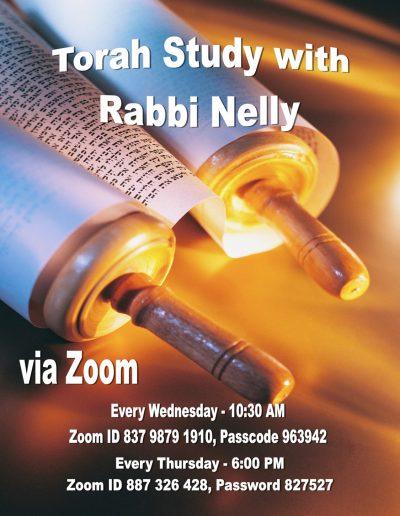 Rabbi Nelly Torah Study